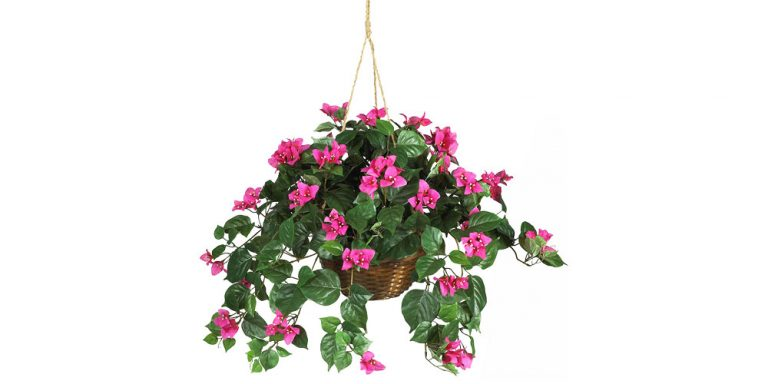 Petes-Ace-Hardware-Garden-Center-Hanging-Plant-Decorative-Pot